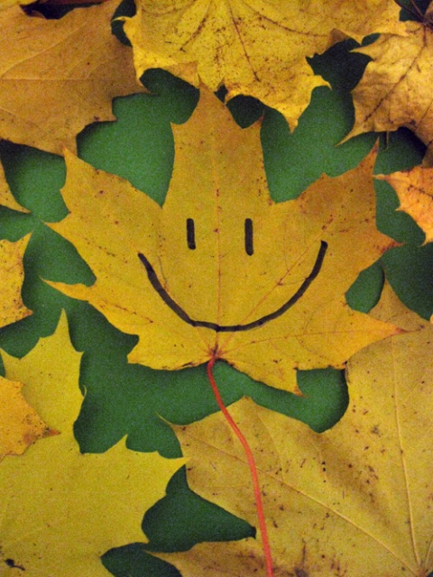 байкал картинки осень наступила след улыбка осени лист все одной конструкции