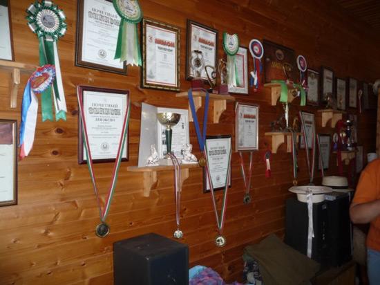 Уголок для медалей и грамот своими руками